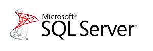 Logo of microsoft SQL Server database used to maintain virtual accounting data